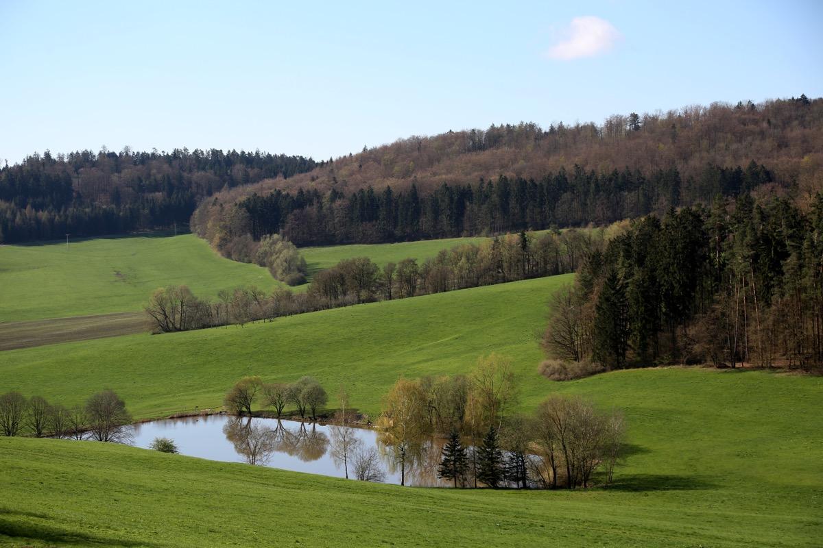 3-Blick-auf-Teich---Route-zur-Schaumburg